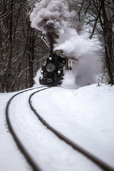Budapest, Hungary - Beautiful snowy winter forest scene with old steam locomotive on the track in the Hungarian woods of Huvosvolgy