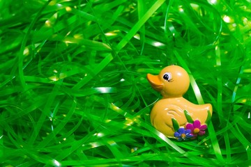 yellow duck in Easter plastic green grass