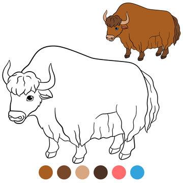 Color me: yak. Cute beautiful yak smiles.