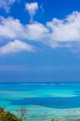宮城島の海