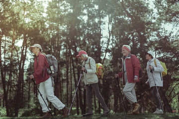 Amateur tourists enjoying one day hike in the forest