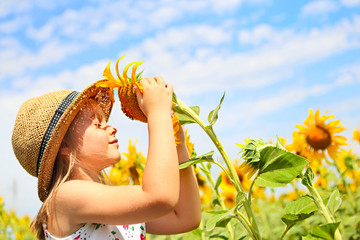 Child playing in sunflower field on sunny summer day
