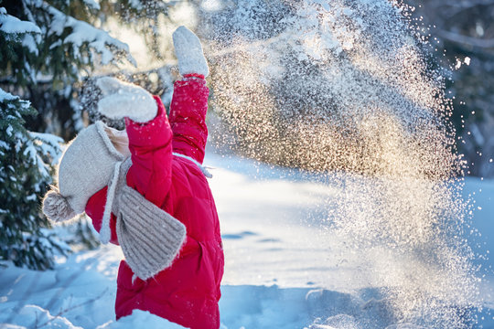 child in the winter forest. Around the snow and branches of fir