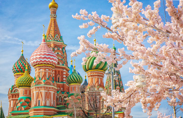 Printed kitchen splashbacks Moscow Moscow and St. Basil Cathedral at spring day through flowering tree