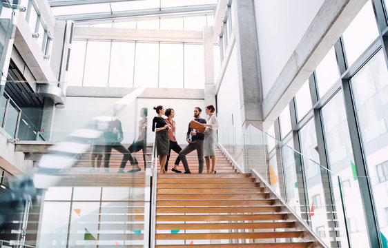 Group of young businesspeople standing on a staircase, talking.