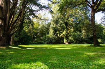 Fototapeta Reggia di Caserta - Giardini