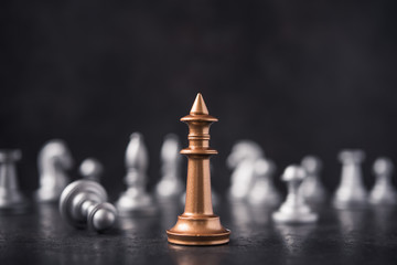 Focus on the chess king