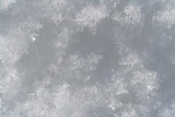Snowflakes Close Up Abstract