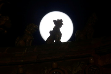Silhouette of a part of the roof decoration is seen against the full moon at the Forbidden City during an event to celebrate the Chinese Lantern Festival on the last day of the lunar new year celebrations in Beijing