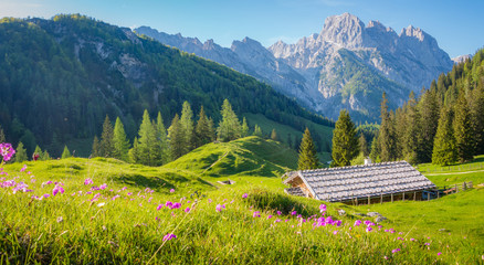 Wall Mural - Idyllic alpine scenery with mountain chalets in summer