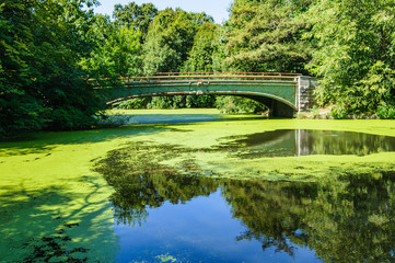 Picturesque bridge in Prospect Park, Brooklyn, New York, USA
