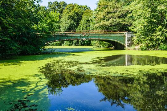 Picturesque bridge in Prospect Park, Brooklyn, New York, USA