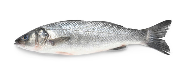 Tasty fresh seabass fish on white background