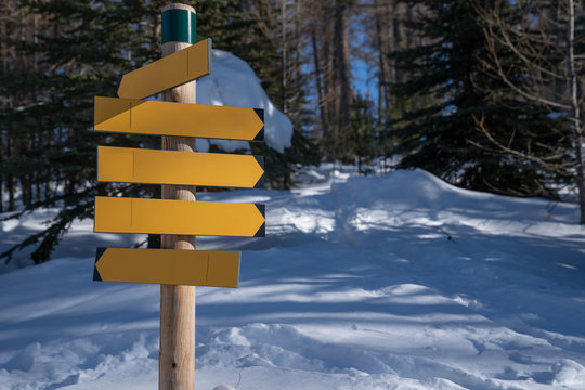 Yellow empty wooden sign in winter forest with snow