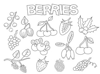 Berries set of icons and objects. Hand drawn doodle organic fruit design concept. Black and white outline coloring page game. Monochrome line art. Vector illustration.