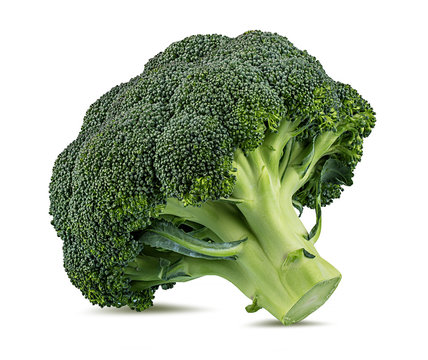 Fresh broccoli isolated on white background with clipping path