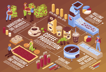 Coffee Production Isometric Flowchart