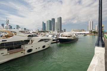 Photo of luxury yachts by the Venetian Causeway Miami boat show