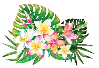 Watercolor summer tropical design for banner or flyer with exotic palm leaves, Plumeria flowers