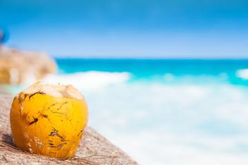 Fresch coconut cocktail on a tropical beach