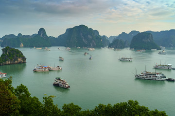 Wall Mural - Ha Long Bay Vietnam. Aerial panoram view. Famous travel nature destination. Green mountains in the water. Islands landscape at Halong