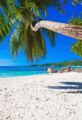 vacation at perfect tropical white sand beach at Praslin island, Seychelles