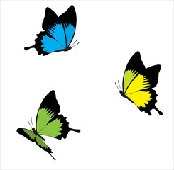 beautiful vector butterflies, red, yellow, blue, green