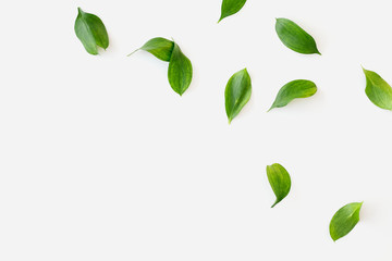 Green leaves mockup Wall mural