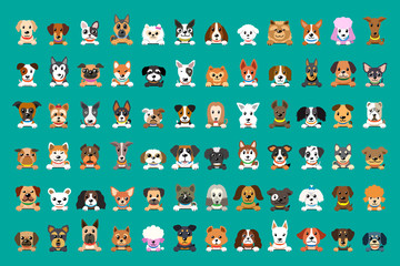 Different type of vector cartoon dog faces for design.