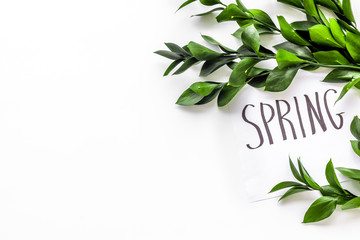 Spring concept. Hand lettering text spring near green branches and leaves on white background top view copy space