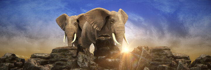 Elephants at sunset. 3d rendering
