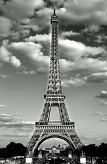 Fototapeta eiffel tower in Paris with Black and White effect and the white