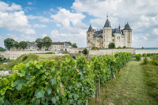 Saumur castle with vineyards in front and grapes
