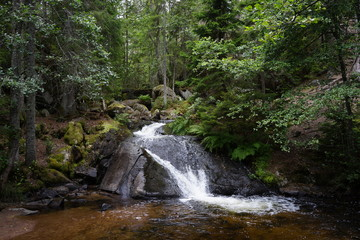 waterfall in a forest in sweden