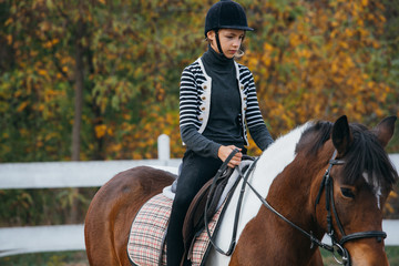 woman horse riding training outdoor