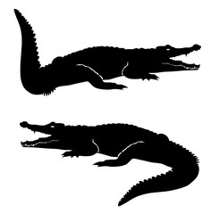 Crocodile icon flat style illustration for web, mobile, logo, application and graphic design vector eps 10