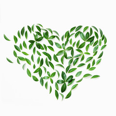 Earth day concept. Floral pattern of green leaves as heart on white.