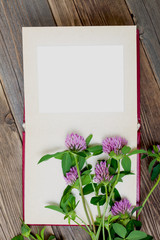 blank photo album and clover flowers