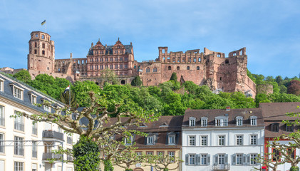 Das Heidelberger Schloss im Frühling, Heidelberg Castle in Spring, Germany