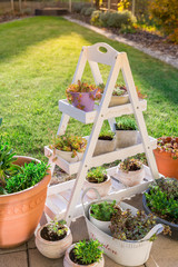 Small stone garden with garden shelf and pottery