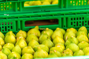 Fresh ripe green yellow color figs fruit in Chiusi, Italy summer street shop farmer's market display in crates boxes