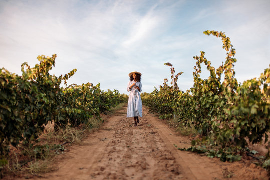 Young woman walking in a path in the middle of a vineyard