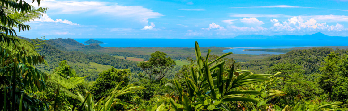 panoramic view over the australian rainforest with river and coastline, cairns australia