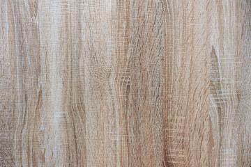 Wood texture. Background from a wooden panel.