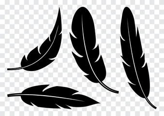 Set of black feather isolated on transparent background. Vector illustration