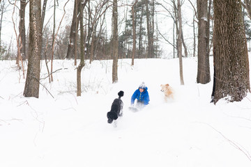 Boy sleds with two dogs