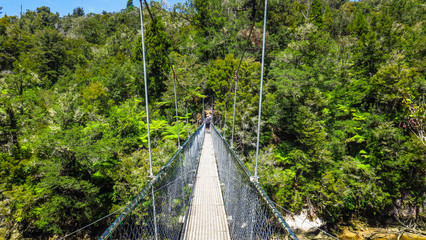 Exploring Abel Tasman National Park on the South Island in New-Zealand