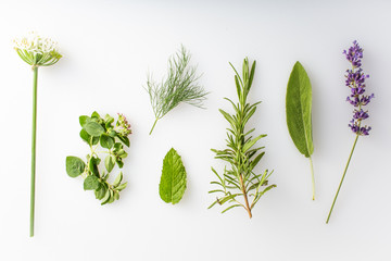 fresh herbs and spices on a white background Wall mural