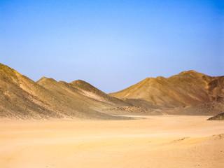 Egyptian desert beginning of the desert sugar in Egypt