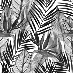 Spoed Fotobehang Aquarel Natuur Watercolor tropical seamless pattern with bird-of-paradise flower, palm leaves in black and white colors.